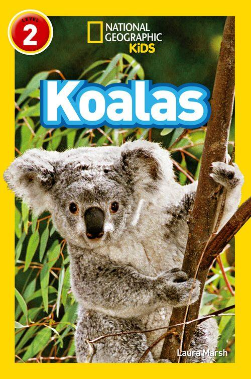 National Geographic Readers - Koalas : Level 2