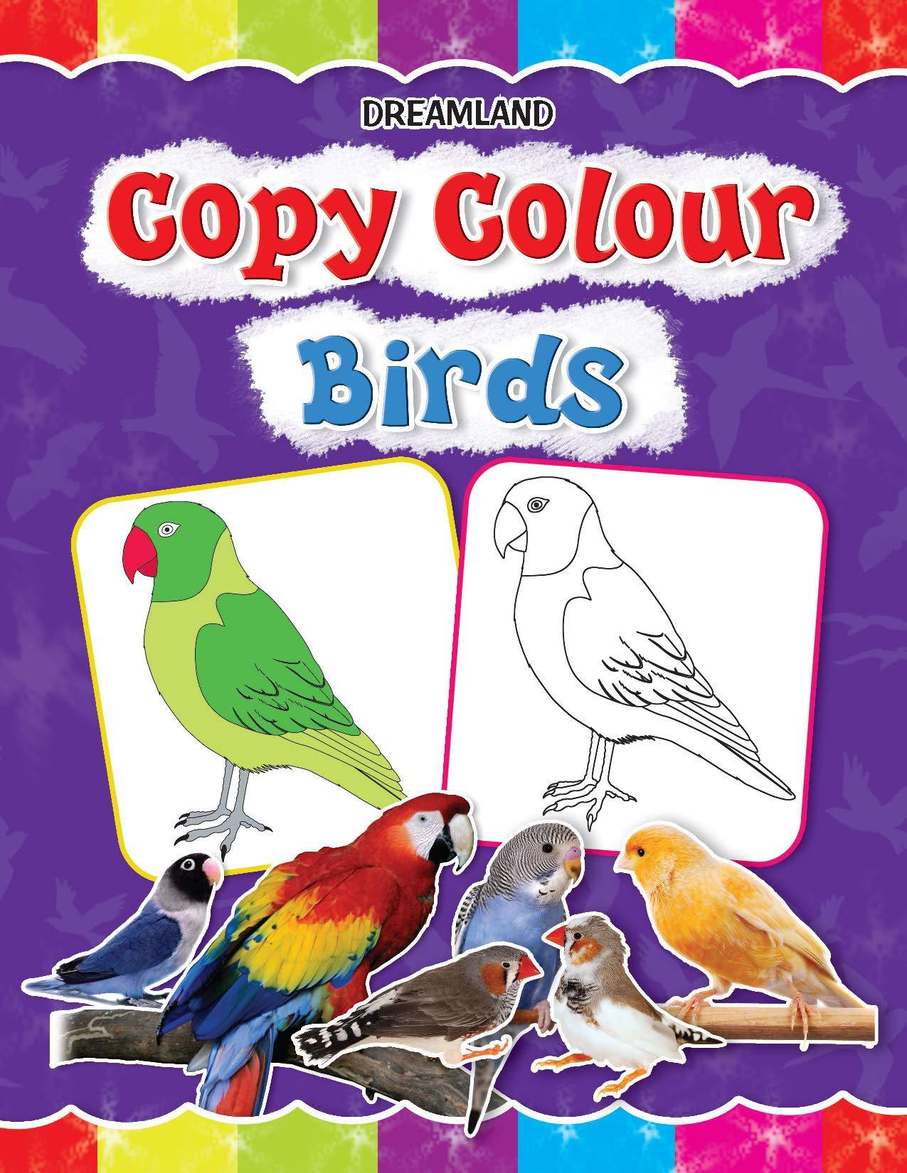 Copy Colour - Birds