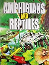 AMPHIBIANA AND REPTILES