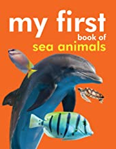 Board book: My First Book of Sea Animals
